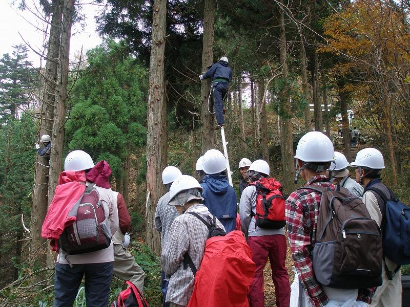 石鎚森の学校2014★森林保全活動★の画像