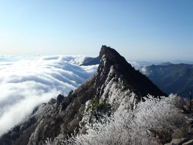 天狗岳に咲く霧氷/冬季~4月(希に5月初旬・この画像は5月初旬撮影)