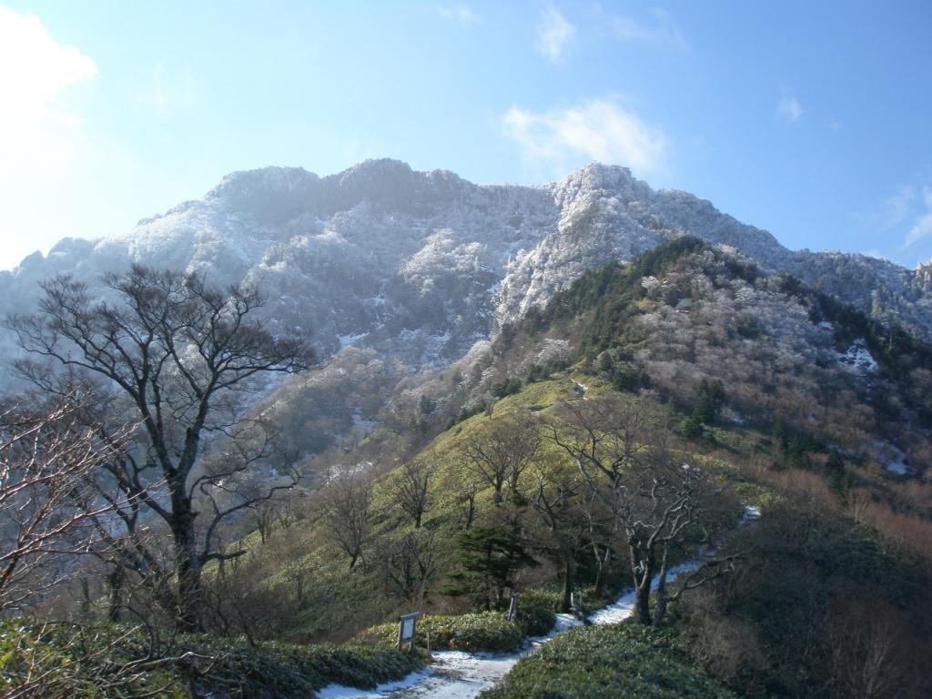 夜明かし峠から望む霧氷の咲いた石鎚山/12月~3月(希に山頂付近は、10月下旬に咲くことも・この画像は11月下旬撮影)