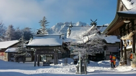 恒例の冬イベント氷点下の雪の森観察♪大人1人、2人のご参加も可能です。の画像