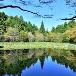 紺碧の秋(笹倉湿原)