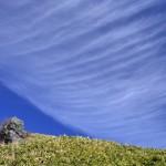 天空の羽根