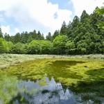 笹倉湿原全景