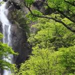 新緑の御来光の滝