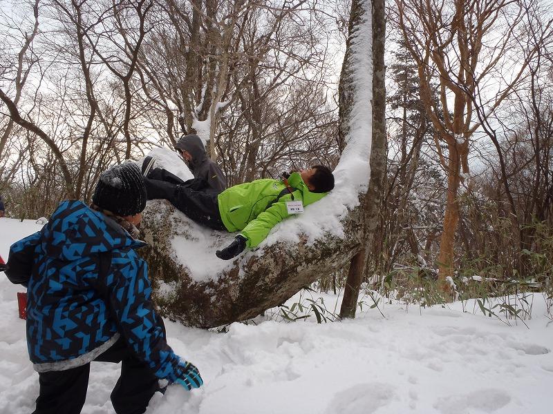 締切り間近!2/9 締切り/石鎚山で氷点下の森の自然観察・雪遊び/星空観察有り♪の画像