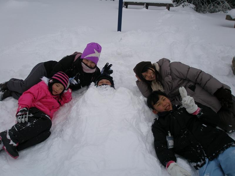 イベント情報-石鎚山の成就地区で~氷点下の森の自然観察・雪遊び画像集-の画像