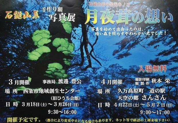 イベント情報/石鎚山系手作り額写真展~月夜茸の想い~の画像