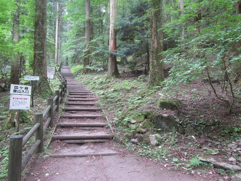 イベント情報~NPO 森からつづく道~よりの画像