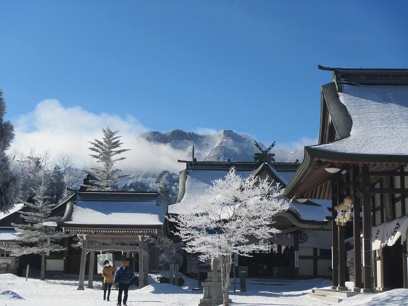 締切り間近です(^^)/石鎚森の学校2018☆冬☆氷点下の森の自然観察&雪遊びの画像